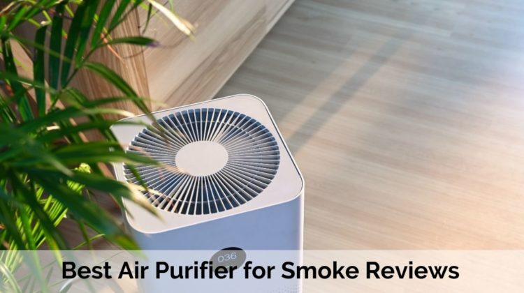 Best Air Purifier for Smoke Reviews