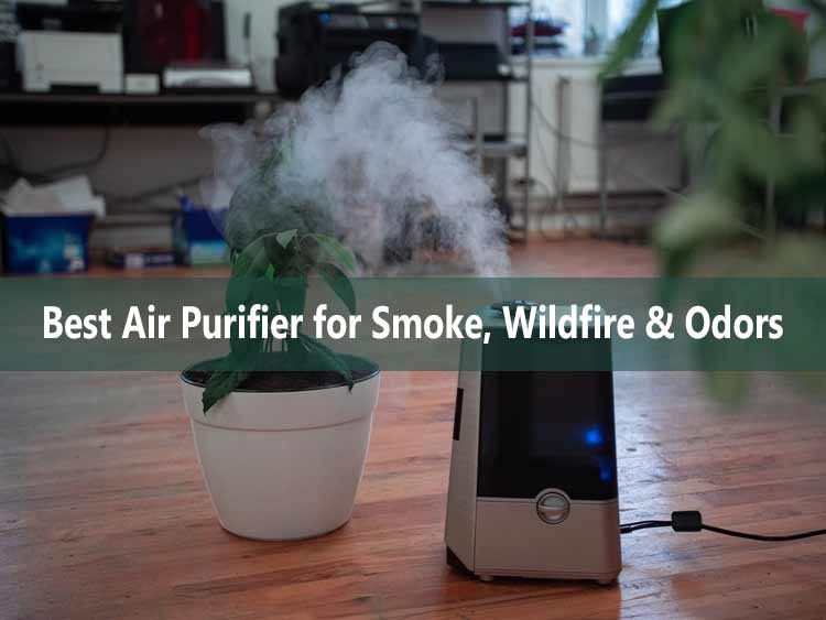 Best Air Purifier for Smoke, Wildfire & Odors