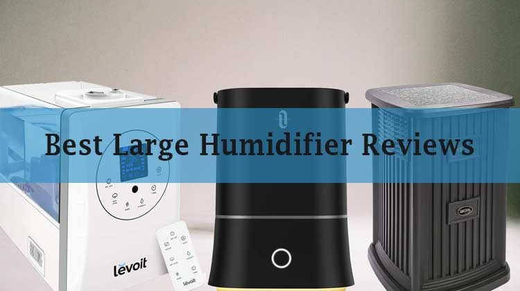 Best Large Humidifier