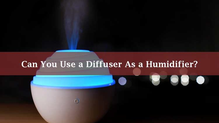 Can You Use a Diffuser As a Humidifier