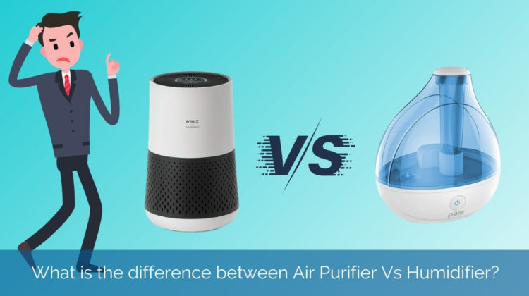 What is the difference between Air Purifier Vs Humidifier